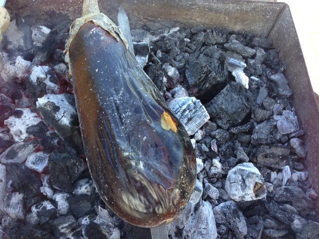 Aubergine - Grillet