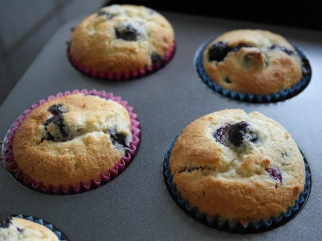 Lækre muffins med blåbær